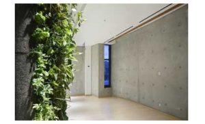 Living wall meditation room at Multi-Faith Centre